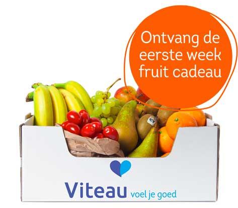 Fruit op het werk bij Viteau voel je goed