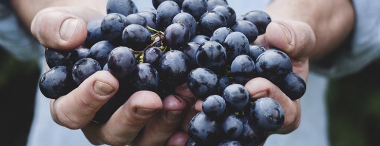 druiven-superfood-viteau-voel-je-goed