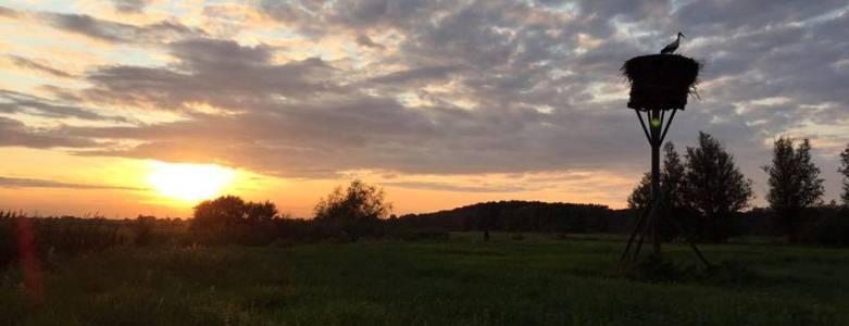 Ooievaarsnest Wandelroute Natuur  Hitland - Viteau Voel Je Goed