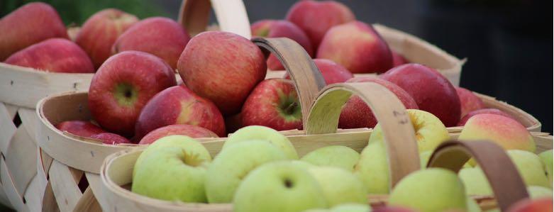 5 tips voor gezondere werknemers op kantoor - Gezond op kantoor - Viteau voel je goed