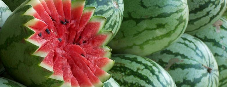 Mijn favoriete zomerfruit - Viteau Voel je goed 2