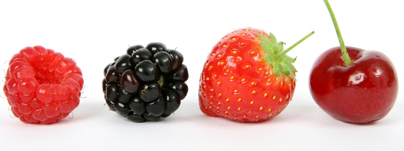 mijn favoriete zomerfruit - Viteau voel je goed 3