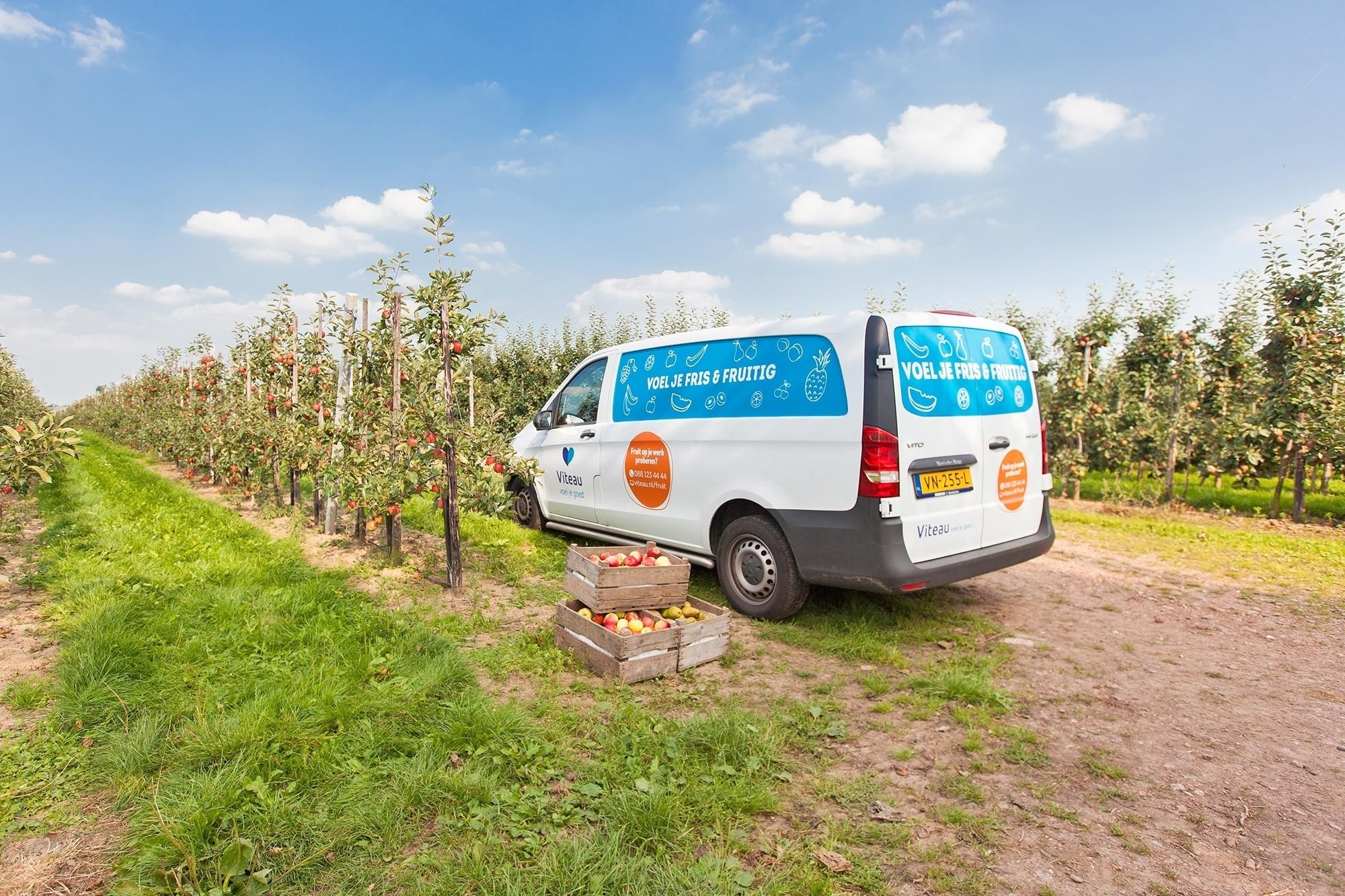 viteau-vers-fruit-bedrijven-boer-fruitboomgaard-kantoorfruit