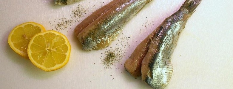 vette-vis-fijn-voor-je-brein-viteau-voel-je-goed-3