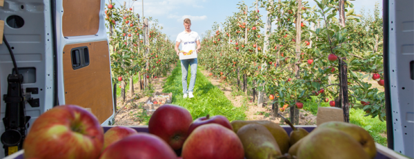 Appels en peren - Viteau voel je goed